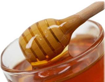 عسل گون گزنگبین