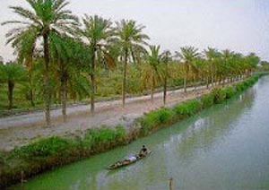 تالاب شادگان در استان خوزستان